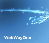 WebWayOne Ireland